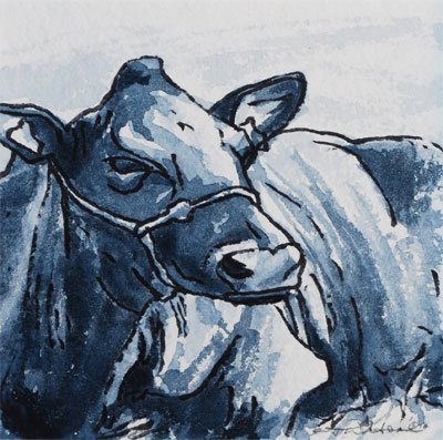 An indigo blue watercolour portrait of a seated cow.